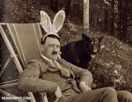 adolf-funny-rabbit-ears