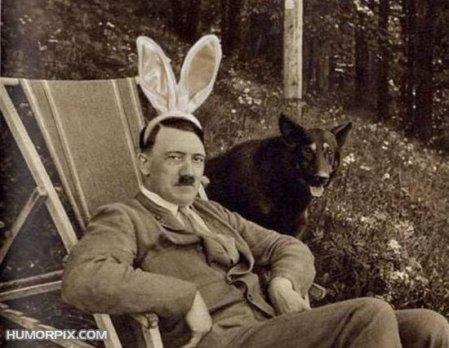 adolf-funny-rabbit-ears