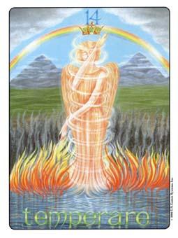 Gill Tarot Deck - The Alchemy