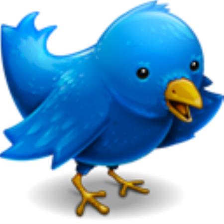 twitter bird 1